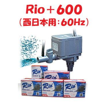 カミハタ Rio+600 水中ポンプ (西日本用:60Hz) リオプラス
