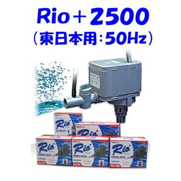 カミハタ Rio+2500 水中ポンプ (東日本用:50Hz) リオプラス