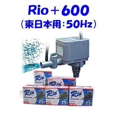 カミハタ Rio+600 水中ポンプ (東日本用:50Hz) リオプラス