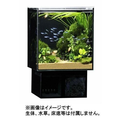 GEX グラステリア アグス OF-230 オールガラス オーバーフロー水槽 LEDライト付 淡水・海水両用 GlassteriorAGS OF230