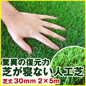 天然と見間違えるほどリアル、ソフトな質感、高級、手入れ芝刈り不要(ガーデンターフ フットサ...