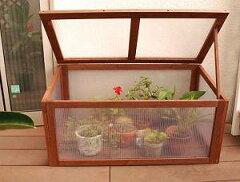 組み立て簡単♪ビニールハウスの代替えに。おしゃれなガーデン温室【在庫限り!】ガーデン木製...