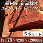 【5本セット】 豪州産新品枕木 高耐久ユーカリレッドアイアン・T75×W200×L2000mm (約30.0kg×5本)