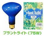 アサヒプラントライト75W植物育成用010100(R95-E26-110-75W)