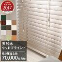 【カラーサンプル】FIRSTAGE ロールスクリーン 生地80色 【送料無料 5色まで】 02P19Dec15