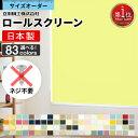 タチカワブラインド製 調光ロールスクリーンデュオレ/クエンテ防炎 単色フレーム/サイズオーダー/全10色