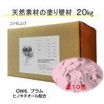 DIY リフォーム 壁 天然素材 珪藻土 日本製 漆喰より安心 自社製造 ベーシック1箱タイプ OW6-プラム 送料無料
