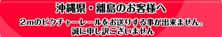 ■オリジナル☆ピクチャーレールスリムライン2m額吊セットワイヤー自在フリーフックLタイプ1m【額2枚分セット】
