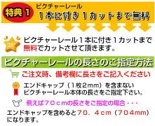 山伸ピクチャーレールスリムライン1m