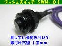 オプションスイッチ SWM?01