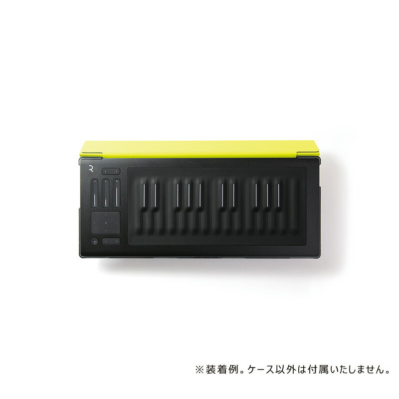DAW・DTM・レコーダー, MIDIキーボード ROLI RISE 25 Flip Case - Lime7