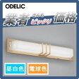 エクステリア 屋外 照明 ライトオーデリック(ODELIC) 【ポーチライト OG254497 OG254498】 ブラケットライト 玄関灯 シンプルデザイン 和風 和モダン 電球色 昼白色 LED