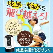 国産!北海道八雲の風化貝カルシウムを使用したサプリメント「グングン」GUNGUN