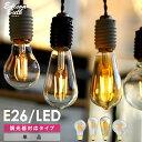 【調光器対応】エジソンバルブ E26 L