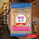 【送料無料 機能性表示食品】糖脂ケア DMJえがお生活 31日分 日本製 | 血糖値 下げる サプリ