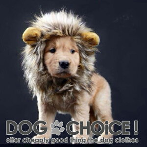 【送料無料】【秋冬モデル】【これで百獣の王に仲間入り】カット不要 かぶるだけでライオンに大変身!目立ちまくり耳付き帽子 ワンちゃんネコちゃんに ペット用 犬用猫用 被り物 ウィッグ【帽子/被り物】