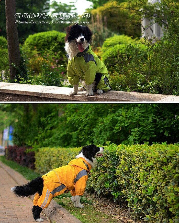 https://thumbnail.image.rakuten.co.jp/@0_mall/dog-choice/cabinet/raincoat/bear-7.jpg