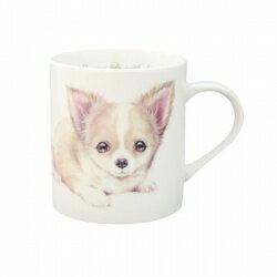 わんコレ マグカップ 【S37】チワワS犬雑貨 犬グッズ