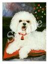 クリスマスカード Ruth【ビションフリーゼ】輸入雑貨 犬雑貨 犬グッズ クリスマス クリスマスカード Xmas