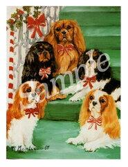 クリスマスカード Ruth【キャバリア】輸入雑貨 犬雑貨 犬グッズ クリスマス クリスマスカード Xmas[犬雑貨専門店 銀屋]