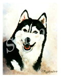 グリーティングカードRuth【シベリアン・ハスキーBlack】輸入雑貨犬雑貨犬グッズ