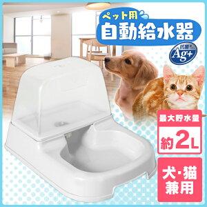 2018-10-17_10h20_31 猫用の自動給水機は留守番時に必要?メリットとデメリットは?