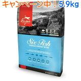 オリジン6フィッシュドッグ 5.9kg 【ランクアップキャンペーン特別価格!(4/26まで)】