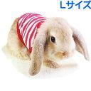 レインボー rabbit ミニボーダーTシャツ L レッド その1