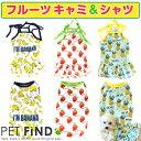 犬 服 春 夏 【フルーツ キャミ&シャツ】可愛いパインとイチゴのお洋服 5サイズ 犬の服夏服