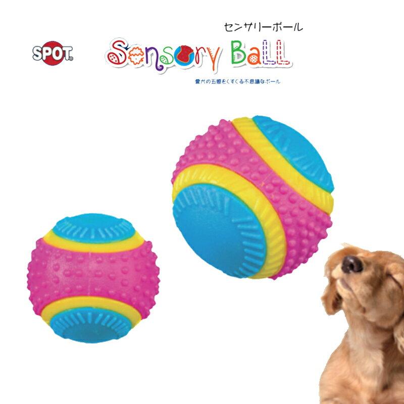 犬のおもちゃ PLATZ  EP センサリーボール M 愛犬の五感をそれぞれ使って遊べる、カラフルで楽しいボール