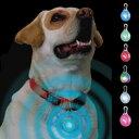 犬のお散歩用 PLATZ NI ナイトアイズスポットリット LEDライト内蔵 ステンレスクリップ付き