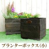 園芸・ガーデニング用品 植木鉢 木製プランターボックス(小)×2個セット【送料無料】【534703SET】