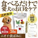 犬 猫 無添加 サプリ(食べる歯磨き革命 30g)【メール便 送料無料...