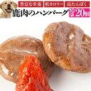 犬用 手作りご飯(鹿肉 ハンバーグ 10袋)無添加 国産【冷凍 送料無料】
