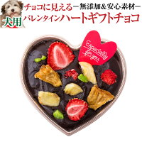 【期間限定販売】犬用 バレンタイン チョコ(ハートのギフト チョコ ケーキ)ヴァレンタイン
