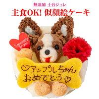 犬用 誕生日ケーキ(犬の似顔絵 ケーキ)無添加 犬用ケーキ【クール便】