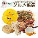 犬 手作りご飯 おやつ のセット(無添加・グルメ 福袋)【送料無料】