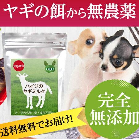 犬のサプリメント・アミノ酸