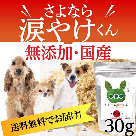 犬のサプリメント・口臭・歯石・歯周病・歯磨き