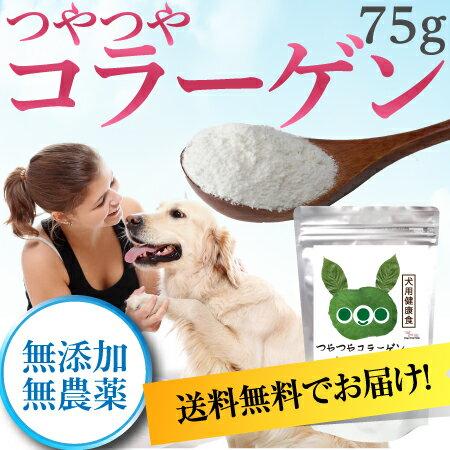 犬のサプリメント・毛・毛艶・皮膚