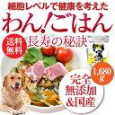 犬・手作りごはん(ドッグフード わんごはん 長寿の秘訣 1680g)無添加 国産 高齢犬・シニア【通常便 送料無料】