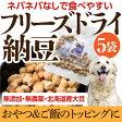 犬・おやつ 無添加 国産 納豆(フリーズドライ納豆 5袋)【犬 おやつ】