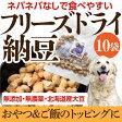 無添加 犬用おやつ(フリーズドライ 納豆 10袋)【犬 おやつ 国産】
