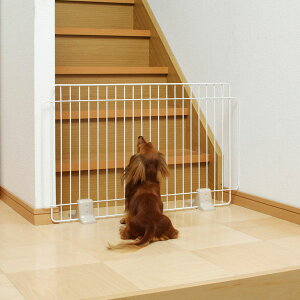 階段や玄関など!愛犬の事故防止にペットゲート(ペットフェンス)がお役立ち【ペット ゲート...