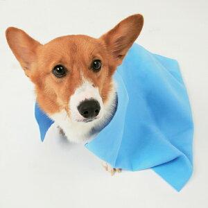超吸水ペット用タオル Lサイズ