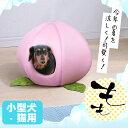【4H限定!店内商品ポイント5倍!4/20(土)20:00〜...