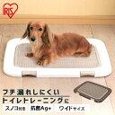 犬 トイレ トイレトレー フチもれしにくいトレーニングペットトレー FTT-485 (幅48.5cm) トレーニング 犬 トイレ トイレトレー トイレタリー いぬ イヌ アイリスオーヤマ ドッグパーク [WNC]