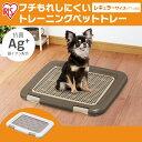 犬 トイレ トイレトレー フチもれしにくいトレーニングペットトレー FTT-485 (幅48.5cm) トレーニング 犬 トイレ トイレトレー トイレタリー いぬ イヌ アイリスオーヤマ ドッグパーク [WNC] 3