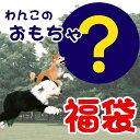 【福袋】【送料無料】【1000円ぽっきり】おもちゃ福袋【fkbr-i】