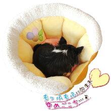 ベッド】ベリータルト【犬